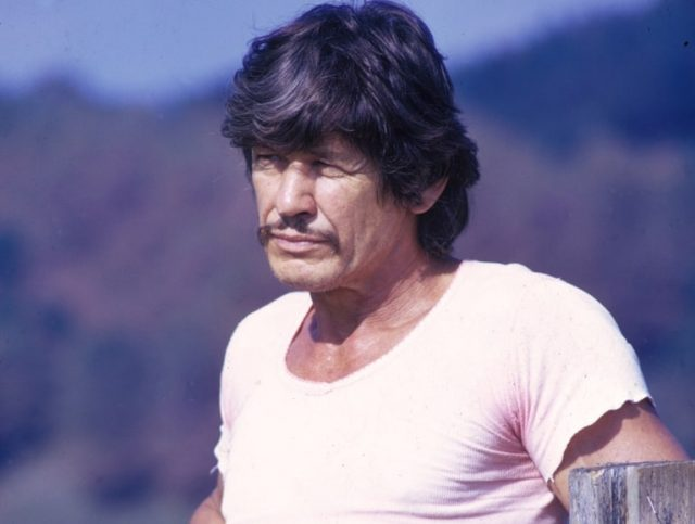 Charles Bronson (Actor) Biography, His Wife, Children and Net Worth